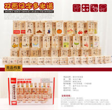 MWZ 100pcs Pine Wooden Double Sided Blocks Domino Game Chinese Character Cartoon