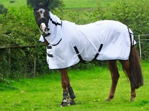 ** NEW** White Fly Rug for Horse / Pony / Shetland - Lightweight Full Neck Combo