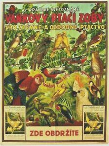 Original vintage poster VANKOVY CZECH BIRDFOODS PARROTS c.1935