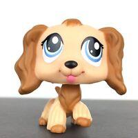 Authentic Littlest Petshop 1318 Dog Spaniel Cocker / Chien Epagneul LPS Pet Shop