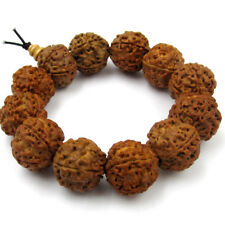 18mm Rudraksha Bodhi Seed Beads Tibet Buddhist Prayer Bracelet Mala
