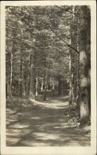 North Conway NH Cathedral Woods c1915 Real Photo Postcard