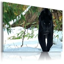 BLACK PANTHER Animals WINTER SNOW Canvas Wall Art Picture AN119 MATAGA