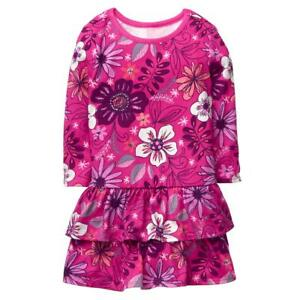 NWT Gymboree Baby Girl Pink Floral Ruffle Dress 12-18 Months