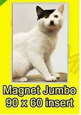 KITLER CAT CUTE JUMBO FRIDGE MAGNET FUNNY JOKE 9X6CM ANIMAL NO UK P&P lst CLASS