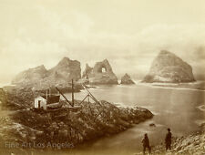 Eadweard Muybridge Photo,  Fisherman's Bay, South Farallon Island, 1871