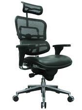 Eurotech Ergohuman Ergonomic High Back Executive Chair, Mesh/Leather, LEM4ERG