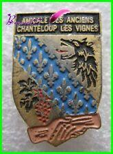 Pin's Amicale des Anciens CHANTELOUP LES VIGNES Loup Fleur Main  #F5