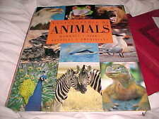 2008 AMBER BOOKS THE ENCYCLOPEDIA OF ANIMALS BOOK OVERSIZE HEAVY BOOK  AUG11