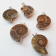 Nellys Ammonit fossili pietra naturale catene rimorchi con elegante gancio di metallo
