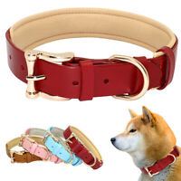 Leather Pet Doggie Dog Collar Soft Padded Gold Buckle D-ring Pink Blue Brown Red