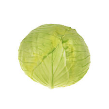 Artificial Vegetable Cabbage Head 18cm Diameter Green