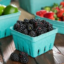 One Quart Pulp Berry Trays 18 count