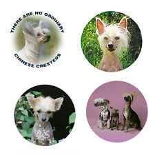 New listing Chinese Crested Magnets:4 Cool Cresties 4 your Fridge or Collection-A Great Gift