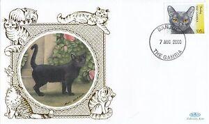 (80907) Gambia Benham FDC Cats 2004