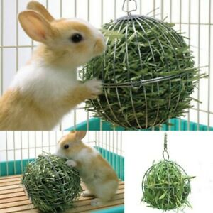 Pet Hay Manger Dish Food Feeder Grass Rack Ball Rabbit Guinea/Pig Hamster AU