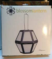 White Blossom lantern LANTERNA lanterne bourgeon Blanche