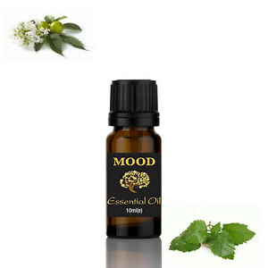 Patchouli Pure Natural Aromatherapy Essential Oils Diffuser Fragrance 10ml