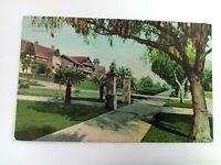 Vintage Postcard Orange Grove Ave Pasadena California CA