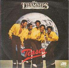 11919 THE TRAMMPS   TEASER