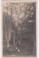 Old Rodney, Baddow near Chelmsford, Essex Lankester RP Postcard, B659