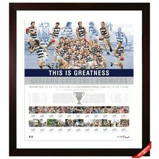 GEELONG CATS 2011 AFL PREMIERSHIP WINNERS LITHOGRAPH HAND SIGNED BY TEAM