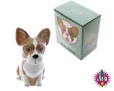 PET DOG 3D  FRENCH BULLDOG SHAPED MONEY BOX PIGGY BANK SAVINGS POT