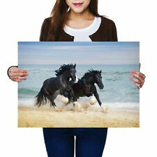 A2 - Shire Horses Animal Ocean Poster 59.4X42cm280gsm #12681