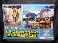FOTOBUSTA CINEMA - TRAPPOLA DI GHIACCIO - WALT DISNEY - 1961 - AVVENTURA - 05