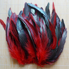 Wholesale 5-8inch/12-20cm Beautiful Rooster Tail Feather 50 pcs,Hot Sale NE