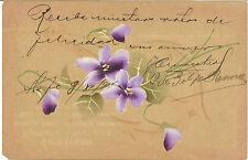 TARJETA POSTAL  - Pintada a Mano - Manuscrita - Circula en interior sobre  NL490