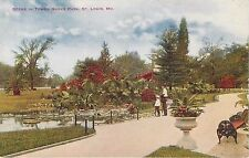 ST. Louis, MO Scene in Tower Grove Park postcard  unposted