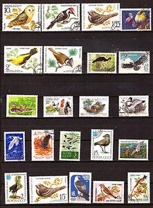 Ussr-Russia: Birds Barnyard, Plan D Water, Prey, Various F201