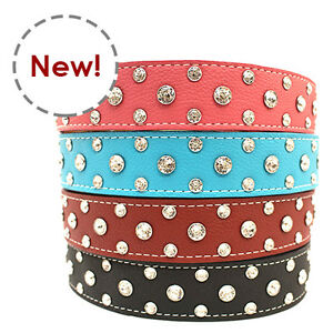 New Auburn Leathercrafters Durable Leather Best Tuscany Crystallized Collar