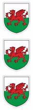 2x Galles, Regno Unito cappotto delle armi PARAURTI ADESIVI