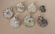 Ammoniten.Fossilie Anhänger   ,ca.  4 x 3 cm ,,(N-23)
