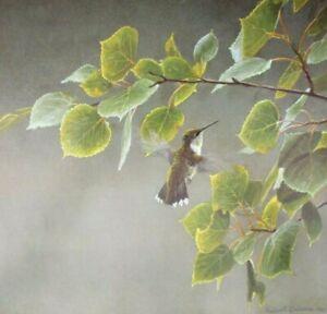 Vintage Art Robert Bateman Female Ruby Throated Hummingbird Flight Leaves Green