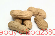 5pcs Chinese YiXing ZiSha Clay Pottery Handmade Peanut Tea Pet Decoration