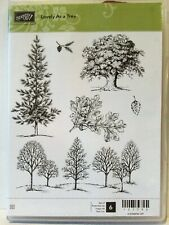 Stampin Up LOVELY AS A TREE clear mount stamps pine woods oak