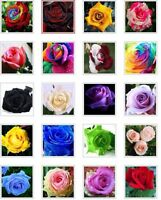 US-Seller 20 kind different colors of flower seeds are mixed together(50 Pcs)