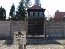 Photo 2005 Auschwitz Concentration Camp Barbed Wire