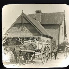Antique Keystone Magic Lantern Glass Slide Photo Alta Gracia Horse & Cart