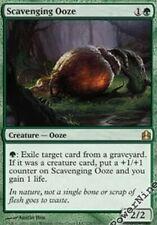 1 PreCon PLAYED Scavenging Ooze - Green C11 Commander 2011 Mtg Magic Rare 1x x1