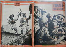 Somalia Halifax Marmarica Aviazione Adrica Gioventu italiana Guerra Africa WWII