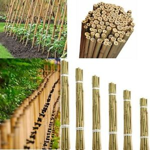 2-7ft Heavy Duty Professional Bamboo Plant Garden Canes Strong High Quality