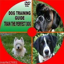 TRAIN A DOG ESSENTIAL VIDEO DVD SIMPLE STEP BY STEP TRAINING / OBEDIENCE LESSONS