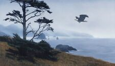 In From The Storm by Terry Isaac Eagle Print 26x16