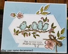 ANY OCCASION Handmade Card Kit, STAMPIN' UP FREE AS A BIRD, Birthday, Flowers,