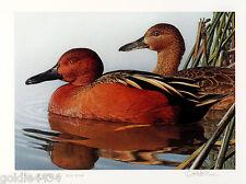 1989 CALIFORNIA Duck Stamp & Print ROBERT STEINER Signed MEDALLION Ed 57/100