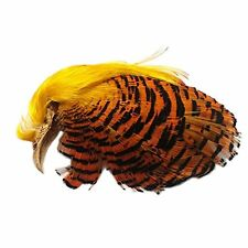 Fly Tying Materials Golden Pheasant Complete Head Crest Feather Crest &Tippet